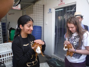Nour and Veronica with Cuys
